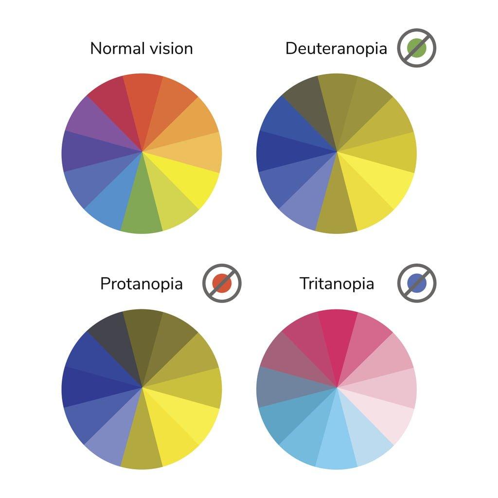 vector illustration, color wheel, colorblind, normal vision, deuteranopia, daltonism, color blindness, tritanopia, protanopia